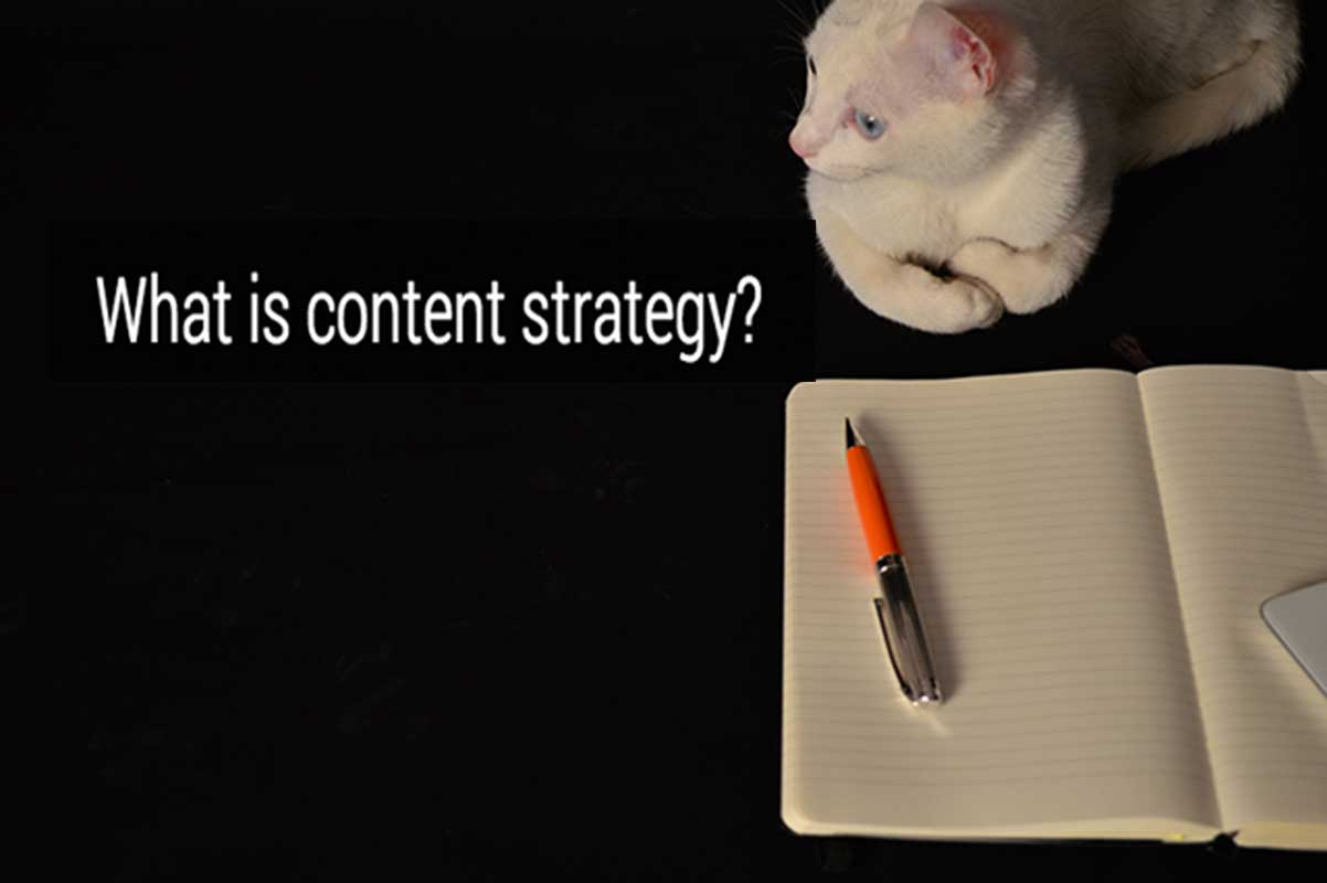 Content Marketing & SEO: The Week's Resources